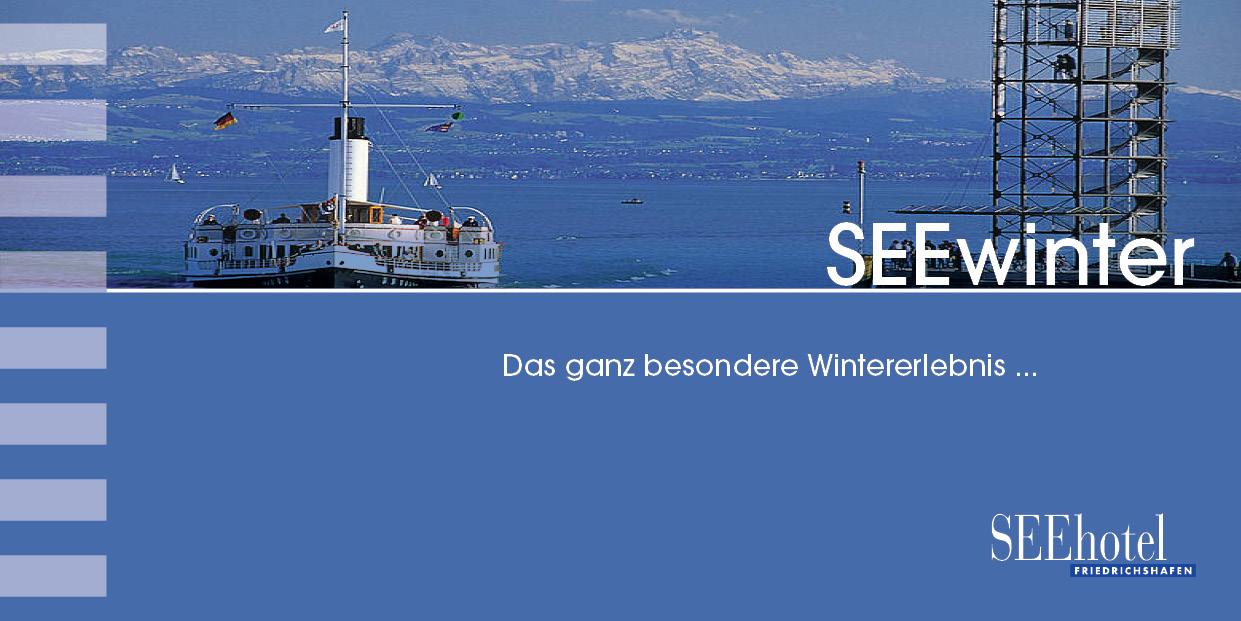 Arrangment Bodensee Friedrichshafen Winter